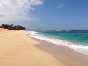 Hawaii 185